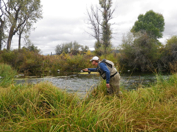 Fool that trout on drys fly fishing blog the view from for Fly fishing classes near me