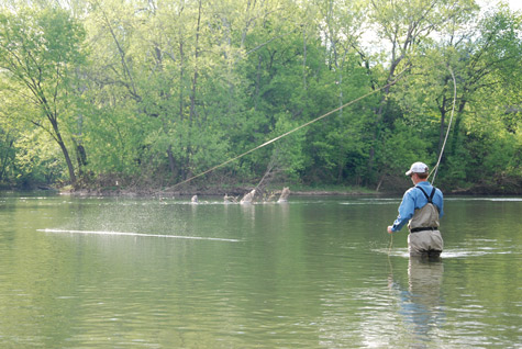 Madtom archives fly fishing blog the view from harrys for Fly fishing podcast
