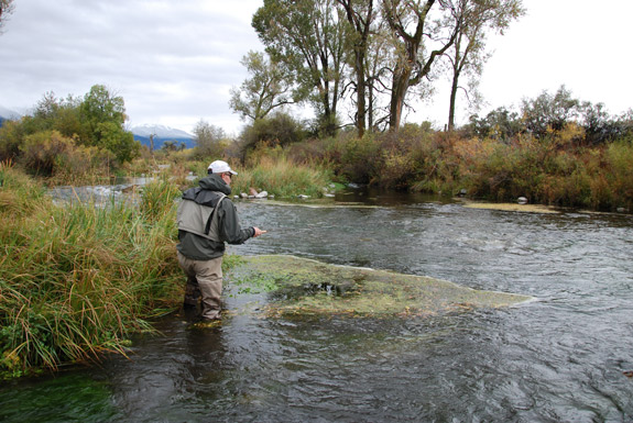 Reading a trout stream fly fishing blog the view from for Fly fishing shops near me
