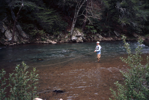 Virginia fly fishing report archives fly fishing the for Fly fishing virginia
