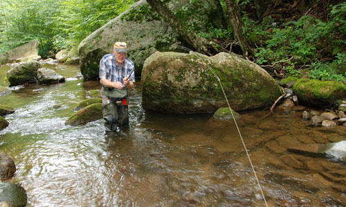 Selecting a fly line podcast by harry murray fly fishing for Fly fishing podcast